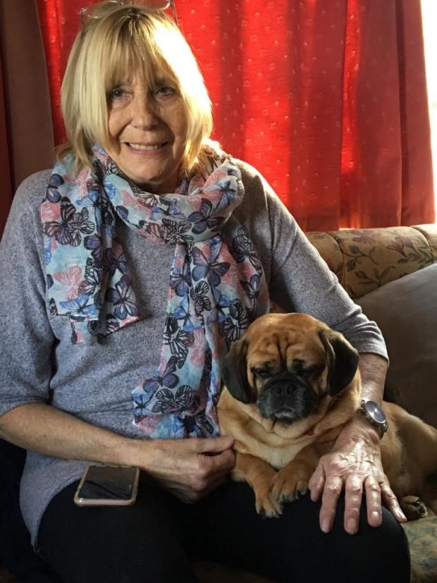 Evesham Journal: Sandra Rolfe and her Crossbreed Penny, a mix of Pug and King Charles Spaniel. Picture: Vets Now