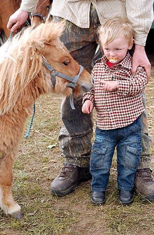 Kane Light, 2, with Junior a miniature Shetland