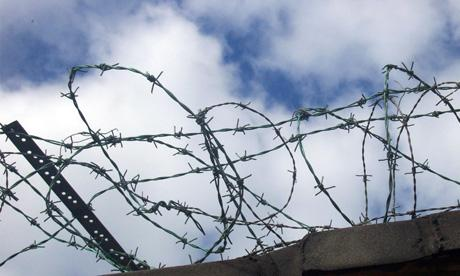 County's MPs oppose the vote for prisoners - ballot