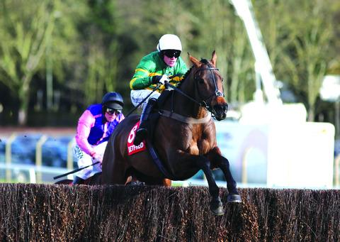 JONJO JOY: Cotswold horse Eastlake, ridden by Richie McLernon, wins at Sandown in the Betfred Handicap Chase.