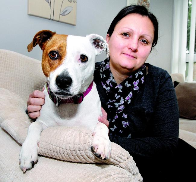 Dog nearly dies after swallowing fish hook | Evesham Journal