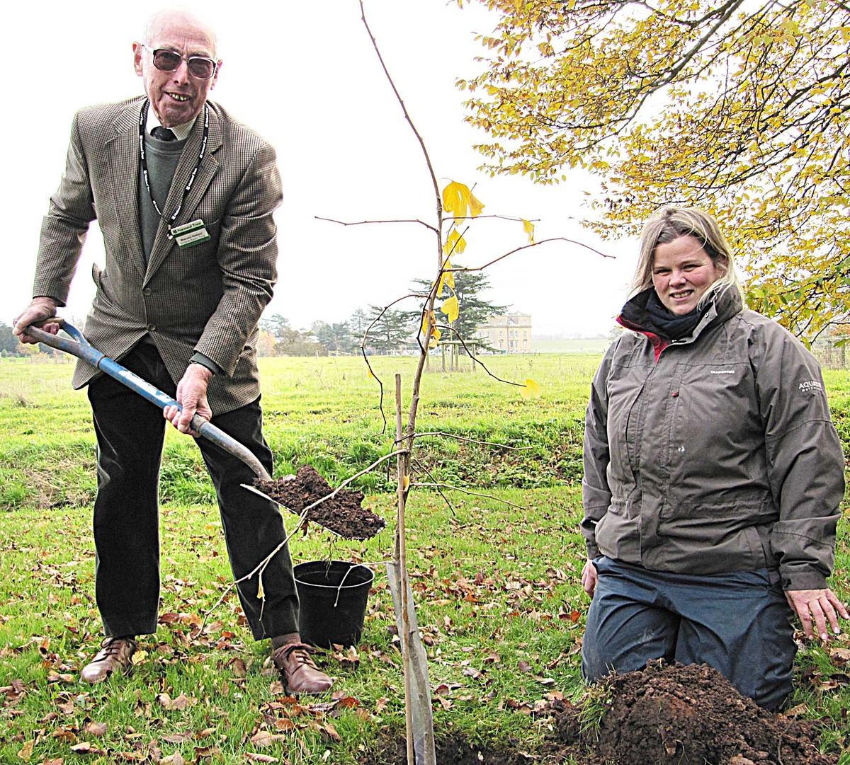 Malcolm Walford, plants a gingko bilbao tree with the help of garden and parks manager Katherine Alker.