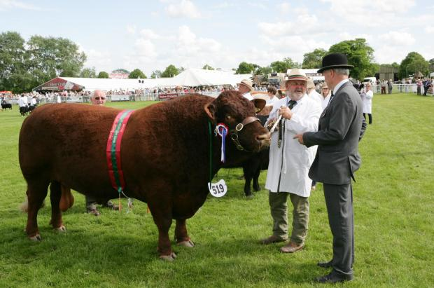 RECORD: Livestock entries at the Royal Three Counties were a record
