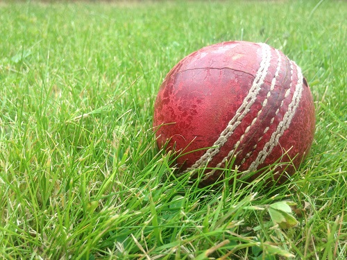 Title glory for Birlingham cricketers