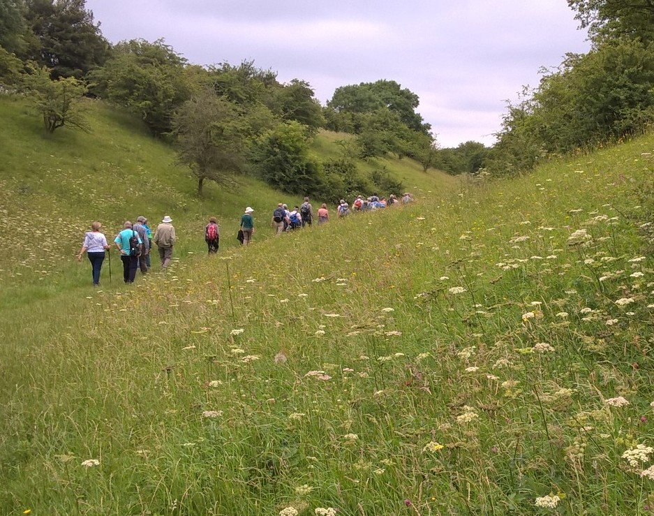 Leam Valley Walk with Evesham Ramblers