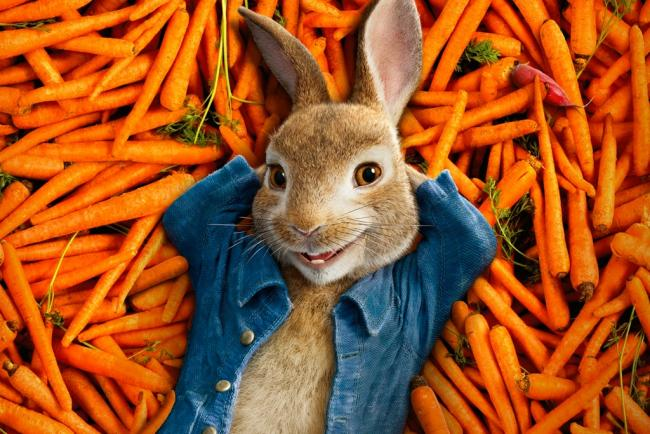 CARROT CRAZY - Must be Peter Rabbit