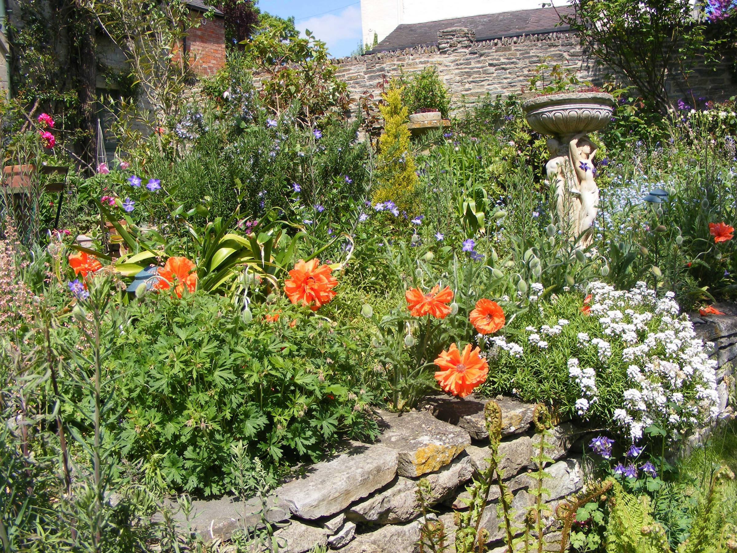 PRETTY: Gardens across Pebworth will be open this weekend