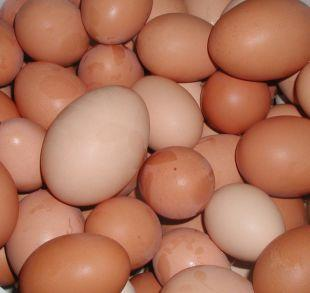 Evesham Journal: Shopkeepers ban youngsters from buying eggs