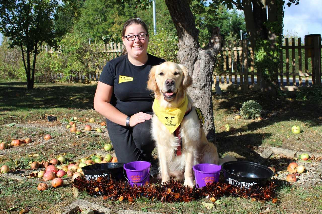 Charlotte Paddock Education Officer at dogs trust Evesham