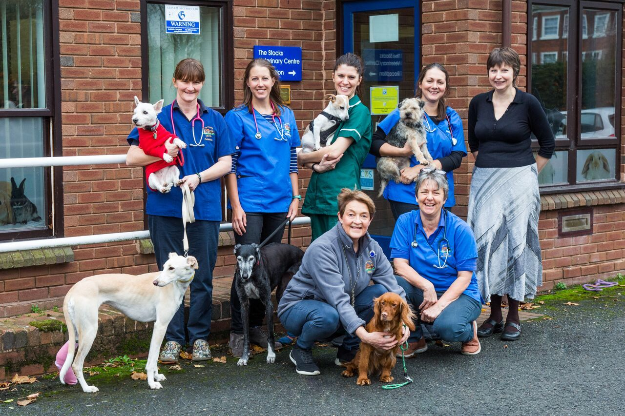 VETS: Staff from the Stocks Veterinary Centre