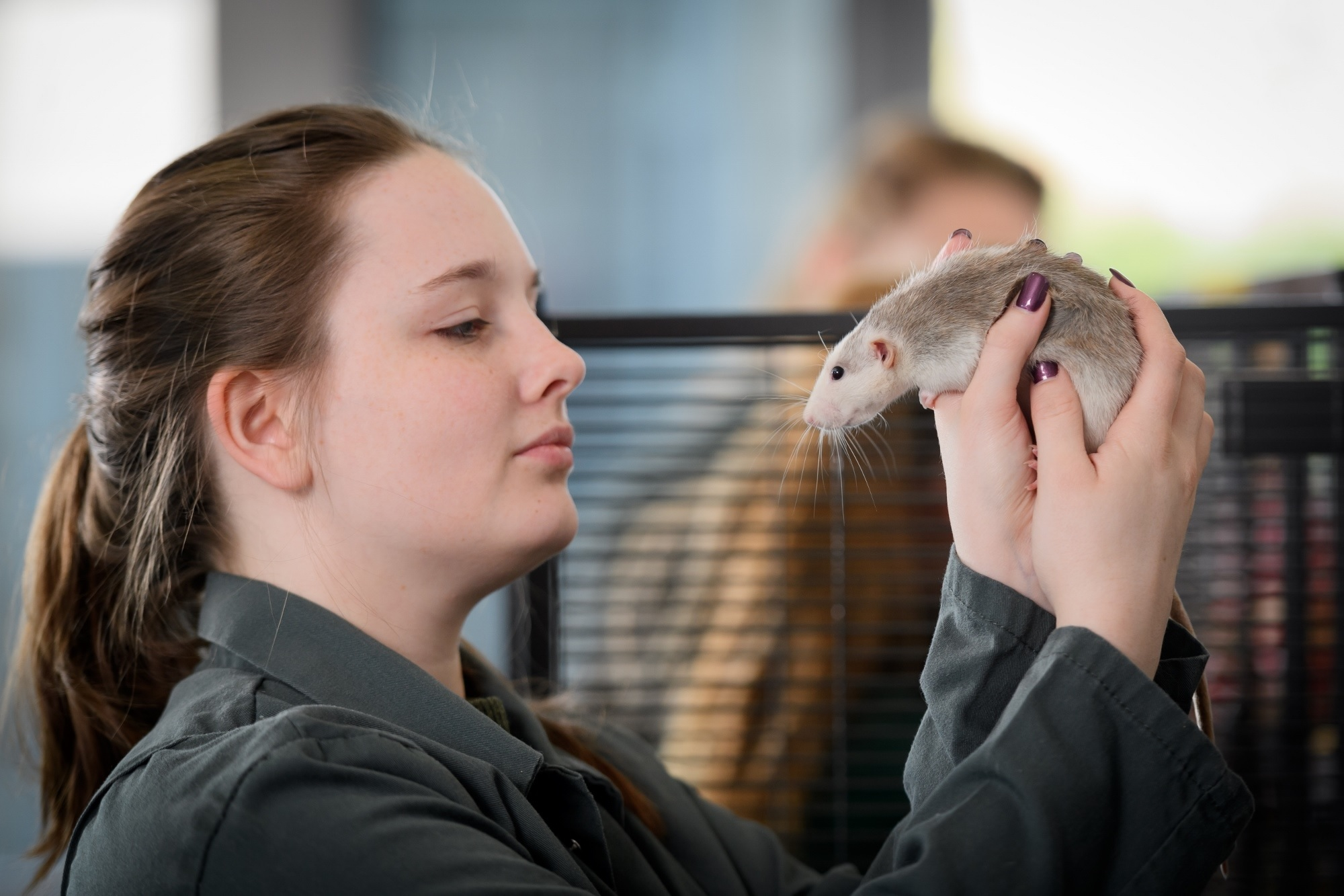 Pershore College has a specialist animal centre which offers a range of courses in animal welfare and veterinary nursing