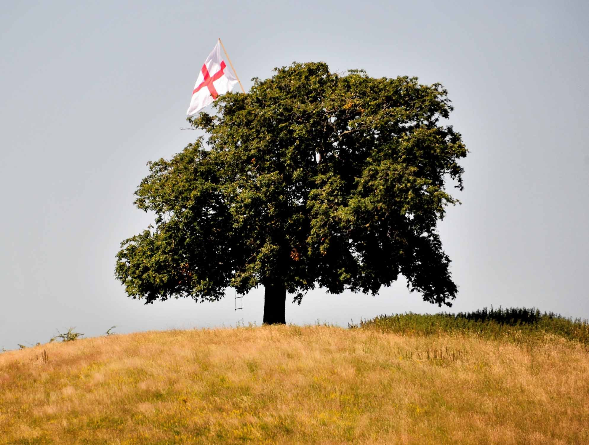 PRIDE: The flag of St George flying in the tree on the Whittington Tump. Jonathan Barry
